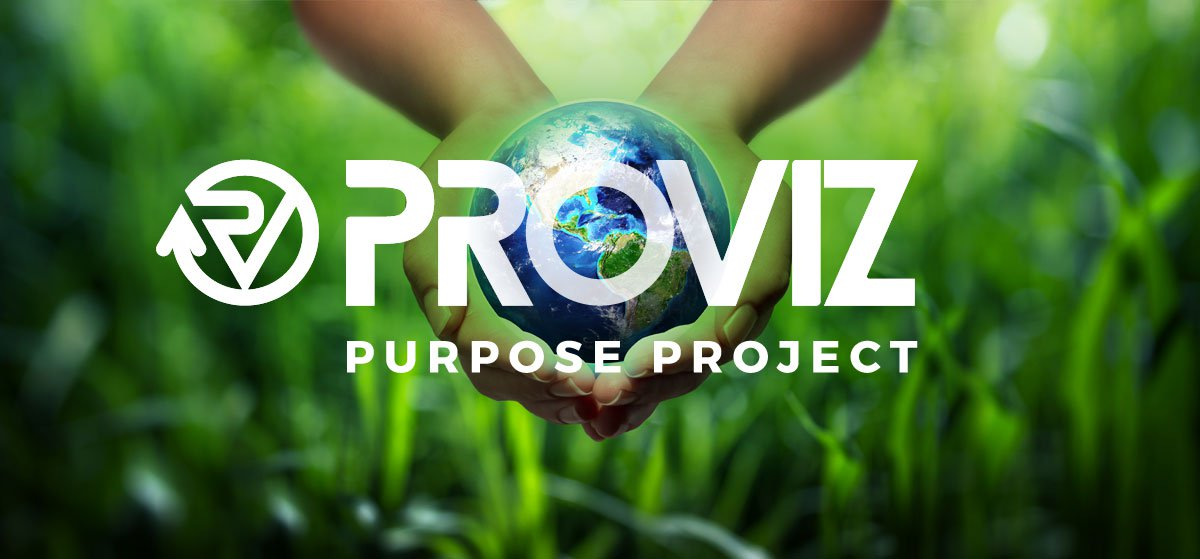 Proviz Purpose Project