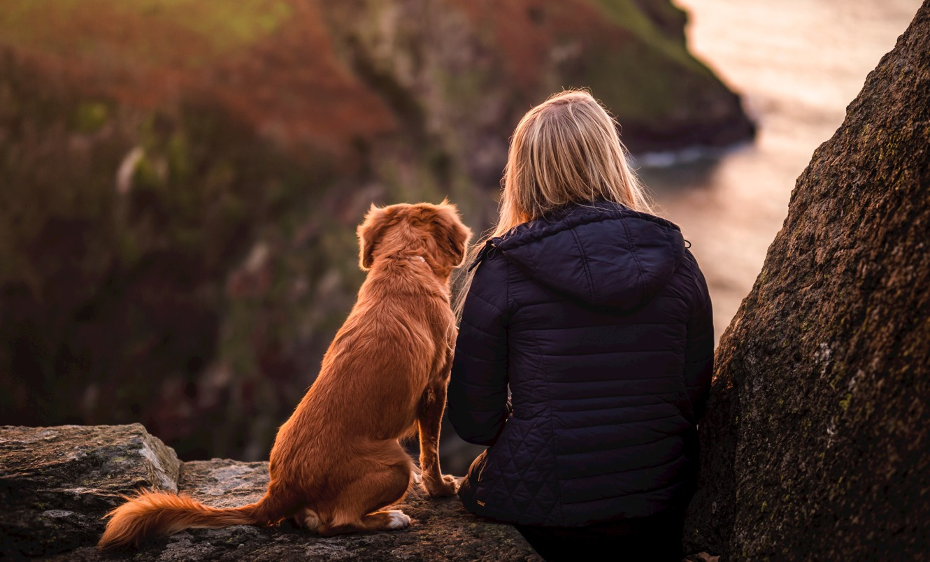 A woman and her dog admire a view from the South West Coast Path