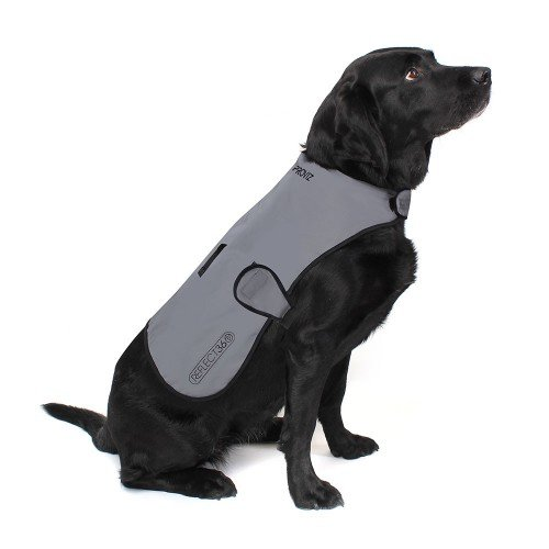 REFLECT360 Waterproof Dog Coat
