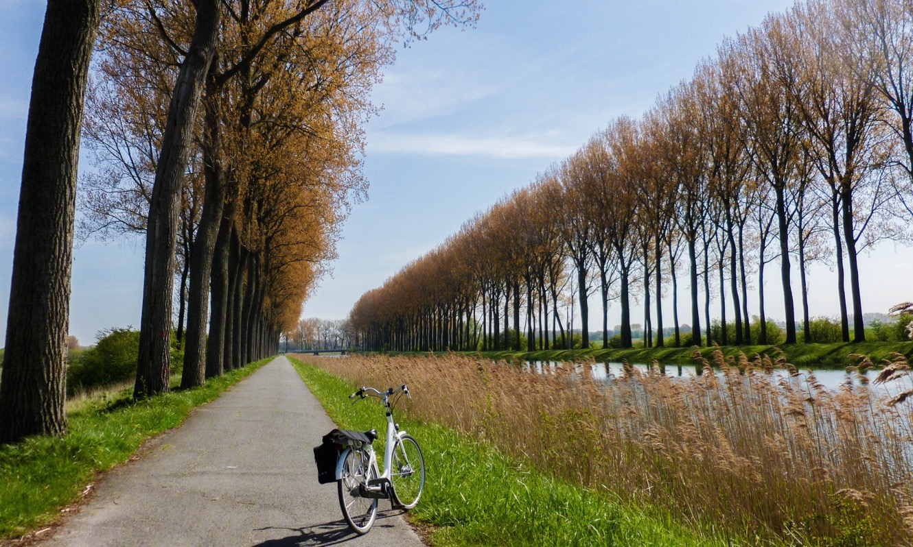 Bicycle By Tree-Lined Canal - Belgium