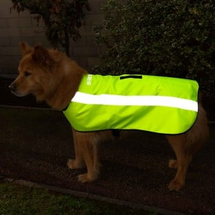 NEW: Classic Hi Visibility Waterproof Fleece-Lined Dog Coat